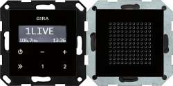 Gira S-55 Внешний вид черного стекла Радио скрытого монтажа RDS арт. 228005