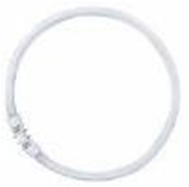 Osram Лампа кольцевая люминесцентная LUMILUX T5 FC 55W/840 холод. белый, d=16мм 2GX13 арт. 4050300528588