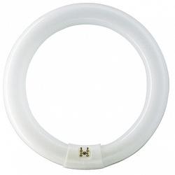 PH Лампа люминесцентная кольцевая TL-E 40W/54 дневная G10q арт. 928027405441
